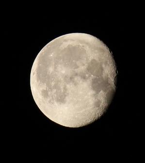 moon.JPGのサムネール画像