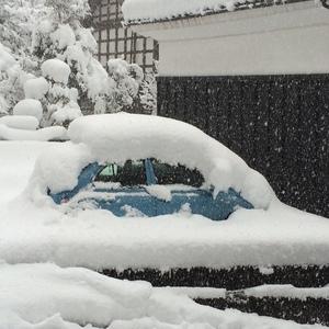 20150104_snow.jpg